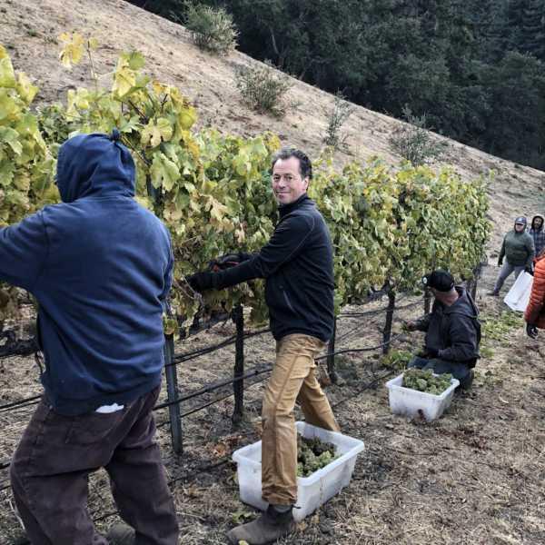 Bradley harvesting with crew