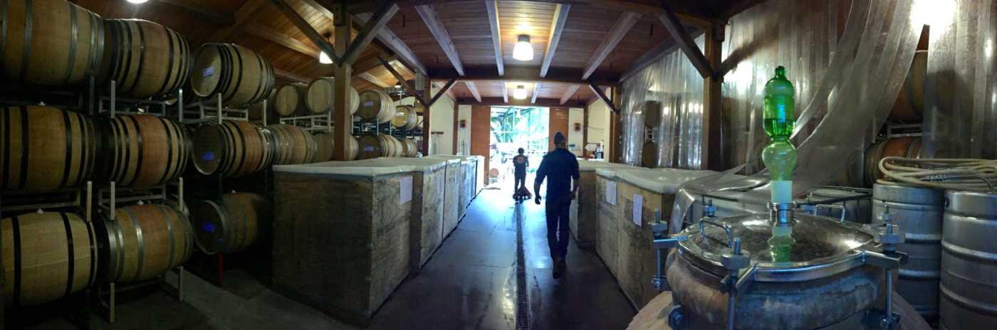 pano view winery